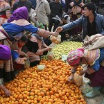 The Best of Sapa with Bac Ha Market
