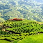 Sapa Minority Trekking 2D1N at Homestay By Bus From Hanoi